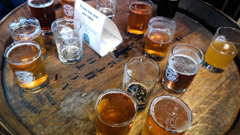 Freemont Brewing Company